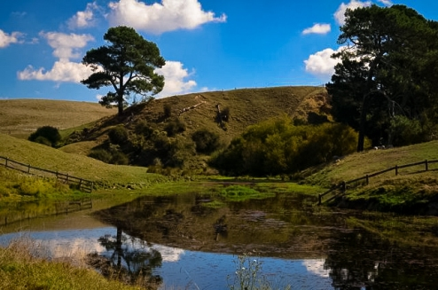 SHIRE REFLECTION