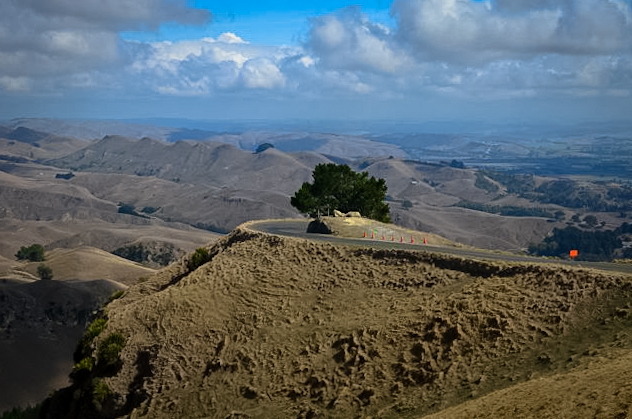 ROAD TO TE MATA