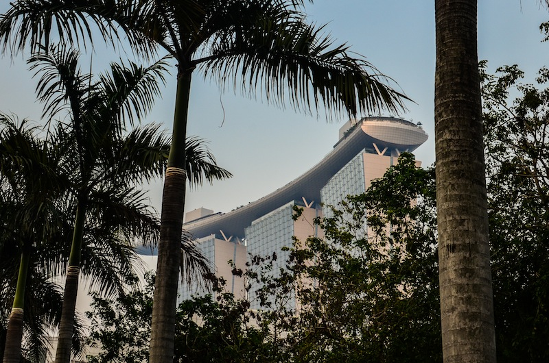 MARINA SANDS THROUGH PALMS