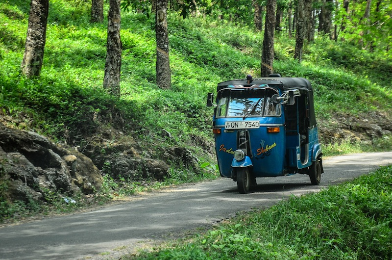 TUK TUK TO TEA