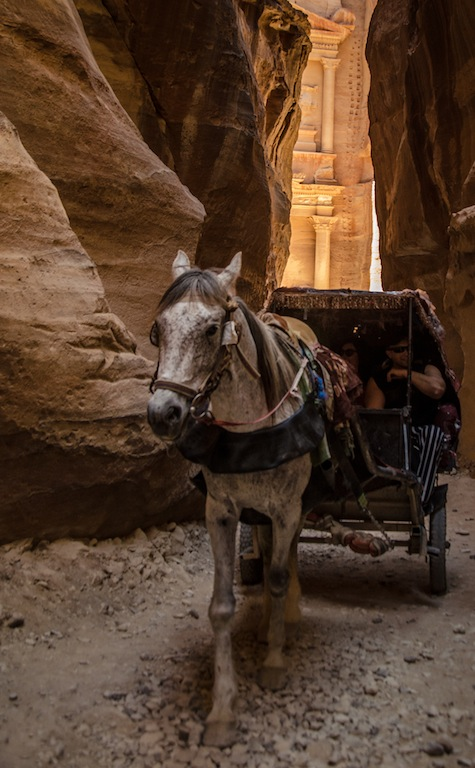 HORSE CARRIAGE THROUGH THE SIQ