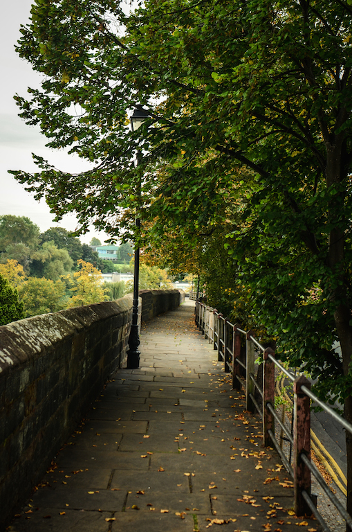 AUTUMN APPROACHING THE WALL