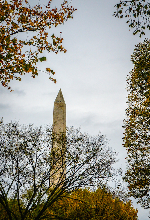 AUTUMN WASHINGTON MONUMENT