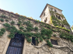 Ivy-covered church